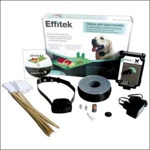 Dynavet Clôture anti-fugue chien + fil + collier