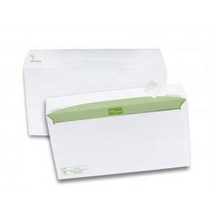 Gpv 6821 - Enveloppe Spécial Scolaire 110x220, 80 g/m², coloris blanc - boîte de 500
