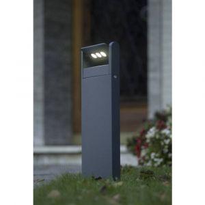 Lutec Lampadaire LED extérieur ECO-Light LEDSpot 9 W anthracite 52.6 cm
