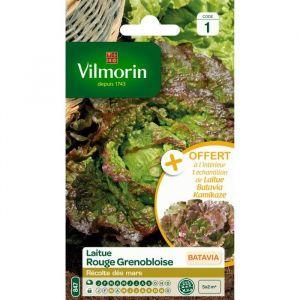 Vilmorin Laitue Batavia rouge grenobloise - Sachet graines