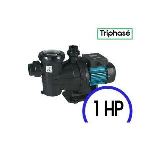 Espa SILVER 18 T - Pompe de filtration piscine