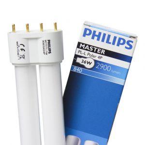Philips lighting MASTER PL-L POLAR 36W/840/4P 1
