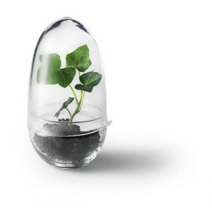 Design House Stockholm Serre Grow - Transparent
