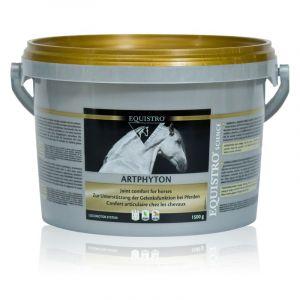 Vetoquinol Complément nutritionnel Equistro Art Phyton 4.5 kg
