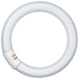 Unilux Réf 100340023 - Lampe circulaire - Ampoule tubulaire fluorescente - 4 broches - 22 W - 20 cm (Import Royaume Uni)