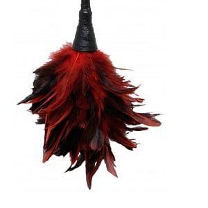 Plumeau rouge Frisky Feather Duster - 35 cm