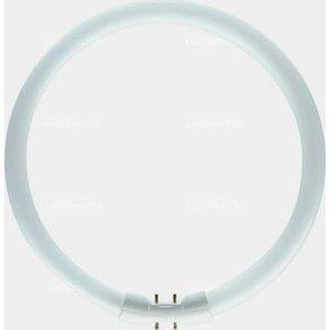 Philips Lampes MASTER TL5 Circular 40W/827, 2GX13 TL5 40W TL 40W827TL5C