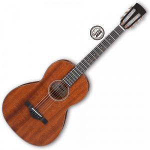 Ibanez AVN9-OPN - Artwood Vintage Open Pore Natural guitare folk