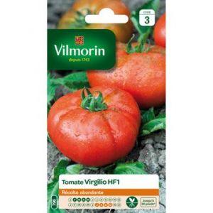 Vilmorin Tomate virgilio hf1 semences potageres 0.15 g