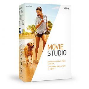 VEGAS Movie Studio 14 [Windows]