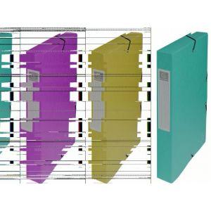 Exacompta 50403E - Boîte à élastique EXABOX, carte lustrée, dos de 40, coloris vert