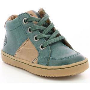 Aster Wiki, Sneakers Haute Garçon, Vert, 22
