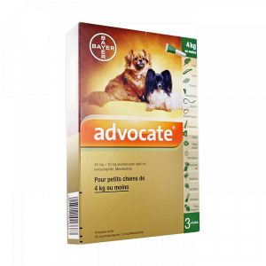 Bayer Advocate - Spot-on petis chiens -4kg, 3 pipettes de 0,4ml