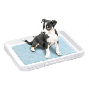 Karlie Puppy Potty Toilettes pour chiots 49,5 x 39,5 x 4 cm