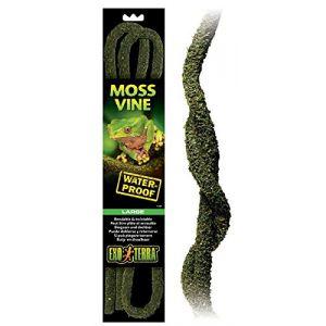 Exo terra EXO-TERRA Bendable moss vine - Large - Pour reptile ou amphibien