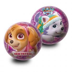 Ballon Pat'Patrouille (modèle aléatoire)
