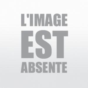 GoodRide SA37 Sport (255/45 ZR20 105W XL )