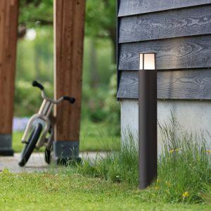 Philips MyGarden stock borne lumineuse 77 cm