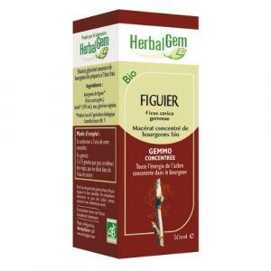 Herbalgem Figuier Macerat - 50 ml