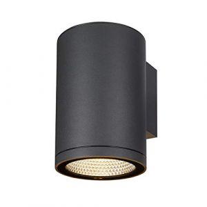 SLV ENOLA, applique extérieure, rond, L, anthracite, LED, 35W, 3000K/4000K, IP65 - Lampes sur pied, murales et de plafond (extérieur)