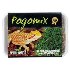 Reptiles Planet Nourriture pour Reptile Pogo Mix Graines à Germer Lot de 2
