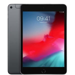 Apple iPad mini 7,9 Wi-Fi + Cellular 256Go - Gris Sidéral