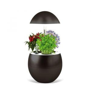 Image de Kitchen gardening Jardin d'intérieur Vilma avec Kit de démarrage et puce NFC - Couleur Charbon