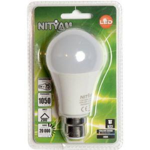 Nityam Ampoule LED GLOBE DEPOLIE B22 12W