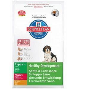 """Hill's Science Plan Puppy Medium poulet """" Healthy Development"""" - Croquettes - Sac de 12 kg"""