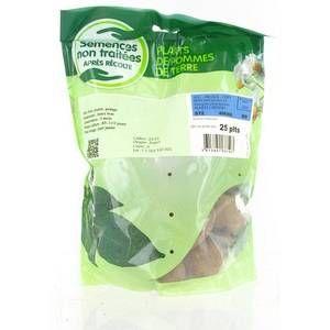 Image de Planteo Pommes de terre Primlady calibre 28/35, 25 plants