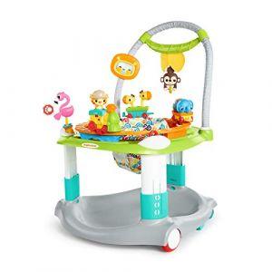 Bright Starts Base d'activités pour bébés Ready to Roll