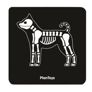 Plan Toys Playset Ma valise de vétérinaire