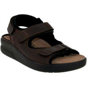 Mephisto Mobils VALDEN OLDBRUSH 11951 DARK BROWN, chaussures compensées homme, Braun