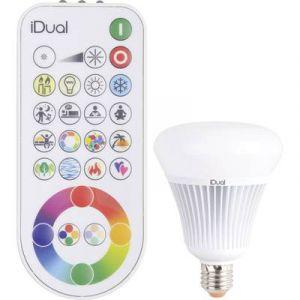 JEDI LIGHTING Ampoule globe LED iDual 16.5W, JEDI, e27