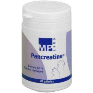 MP Labo Pancreatine : soutien de la fonction digestive pour chien et chat
