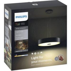 Philips Pendant Fair Noir