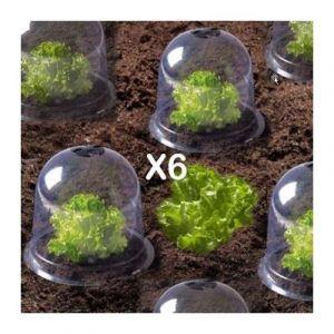 ProBache Cloche à salades X6 serre de protection pour plants