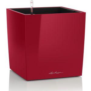 Lechuza Cube Premium 50 Rouge Scarlet - kit complet