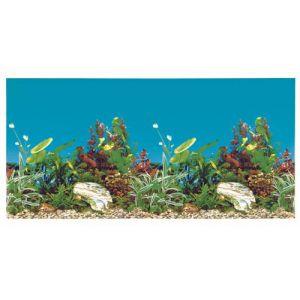 Trixie Fond décor d'Aquarium double, 80 × 40 cm