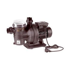 Guinard 86095560 - Pompe Nemo 15 1100 W