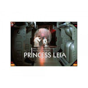 SD Toys Poster en verre Star Wars Leia Help Me (60 x 90 cm)