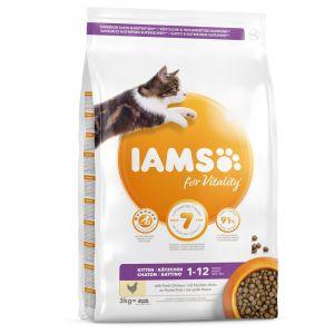 IAMS 3 kg Health Kitten & Junior Pro Active pour chaton