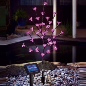 Sunny Trend Cerisier led solaire