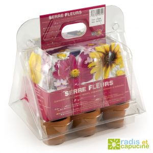 Radis et capucine Mini serre 6 pots fleurs