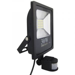 Arum Lighting Projecteur LED 30W détecteur de mouvement