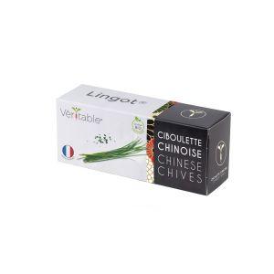 Veritable Lingot Ciboulette Chinoise Bio - Compatible Potager d'Intérieur et Exky - Recharge prête à l'emploi - Substrat avec Graines Intégrées