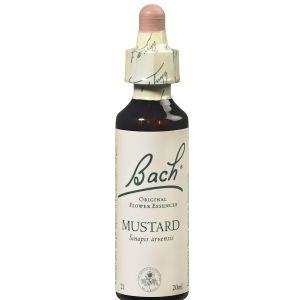 Bach Mustard n°21, 20 ml