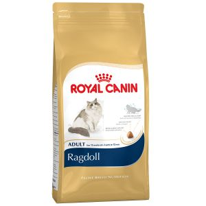 Royal Canin Feline Breed Nutrition Ragdoll Adult - Sac 10 kg
