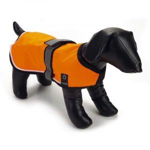 Beeztees Gilet de sécurité nylon avec LED et USB S, 40 cm - Orange - Taille 40