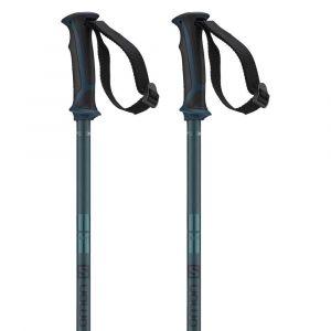 Salomon Bâtons de ski Arctic - Blue - Taille 125 cm
